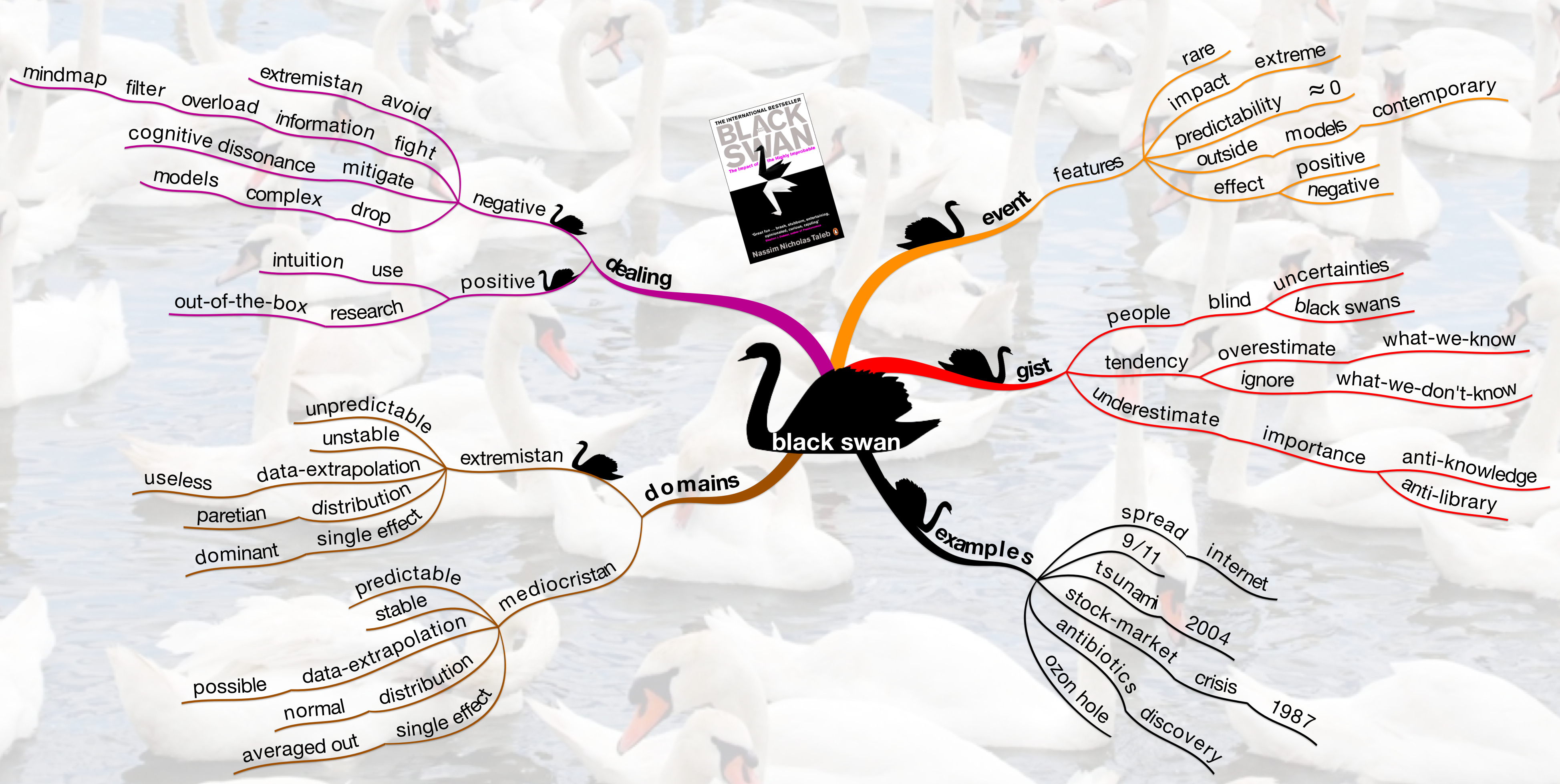 http://mastermindmaps.files.wordpress.com/2010/11/black-swan1.jpg